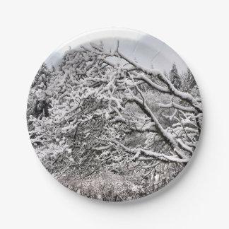 """Plato De Papel Nevado ramifica 7"""" la placa de papel"""