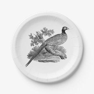 Plato De Papel Pájaro de juego del faisán del vintage que dibuja
