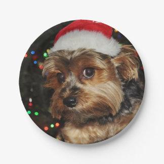 Plato De Papel Perro lindo de Yorkshire Terrier con el gorra de