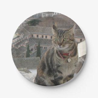 Plato De Papel Placas de papel de la foto del gato