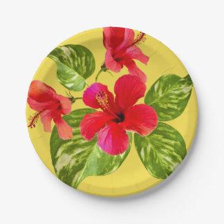 Plato De Papel Placas de papel del paraíso tropical