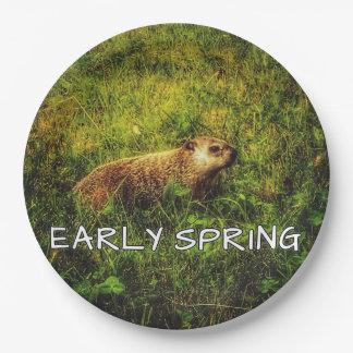 Plato De Papel Placas tempranas de la primavera