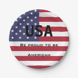 Plato De Papel Plantilla de la bandera americana