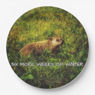 Plato De Papel Seis más semanas de placas del invierno