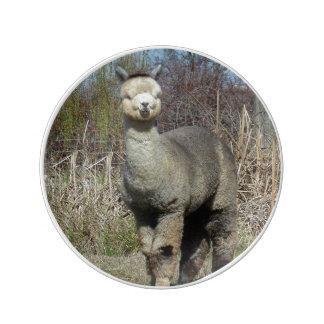 Plato De Porcelana Alpaca