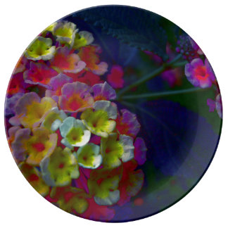 Plato De Porcelana Aurora del ~ del conjunto del Lantana de FʟᴏᴡPᴏᴡ