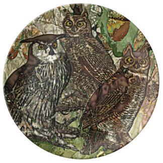 """Plato De Porcelana Búhos 10,75"""" placa decorativa de la porcelana"""