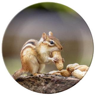 Plato De Porcelana Chipmunk que come un cacahuete