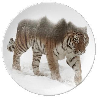 Plato De Porcelana Exposición-fauna tigre-Tigre-doble siberiana