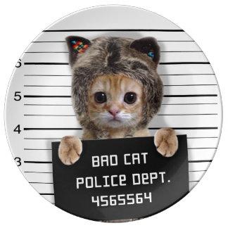 Plato De Porcelana gato del mugshot - gato loco - gatito - felino