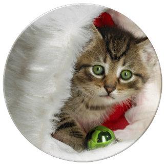 Plato De Porcelana Gato del navidad - gato del gatito - gatos lindos