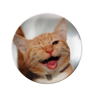Plato De Porcelana Gato que guiña - gato anaranjado - los gatos