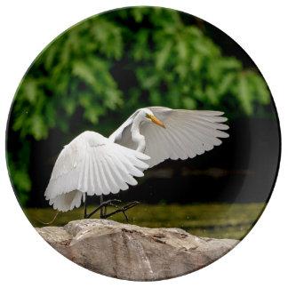 Plato De Porcelana Gran Egret