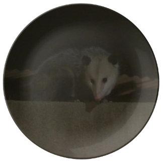 Plato De Porcelana La placa del oposum