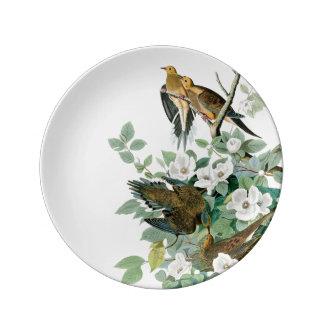 Plato De Porcelana Paloma de la tortuga de Carolina, pájaros de