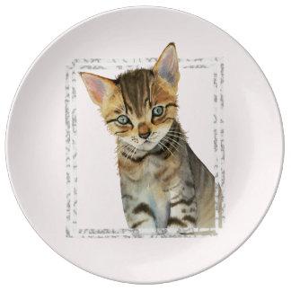 Plato De Porcelana Pintura del gatito del Tabby con el falso marco de