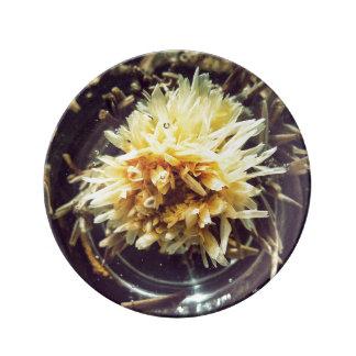 Plato De Porcelana Placa decorativa de la porcelana del té