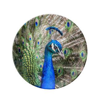 Plato De Porcelana Placa del pavo real