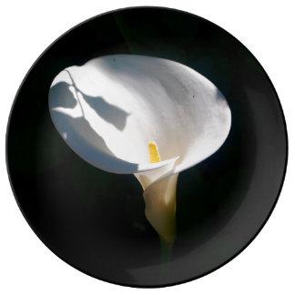 Plato De Porcelana Placa fina de la porcelana de la cala