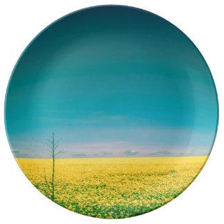 Plato De Porcelana Vayamos espera hacia fuera en los campos