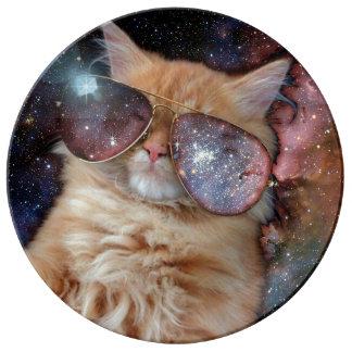 Plato De Porcelana Vidrios del gato - gato de las gafas de sol -