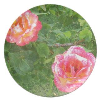 Plato Dos rosados y rosas manchados amarillos en verde
