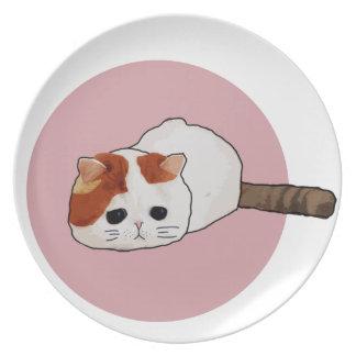 Plato El mascota - gato