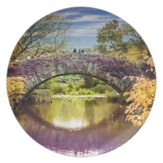 Plato El puente
