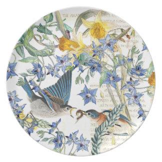 Plato El Wildflower del narciso de los pájaros del