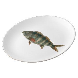 Plato estampado, con diseño de pez plato de cerámica