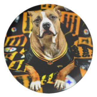 Plato Fanático del fútbol del perro del rescate de