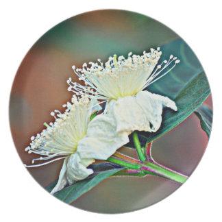 Plato Flor del aguacate de la placa de la melamina @