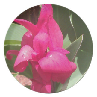 Plato Flor rosada