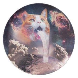 Plato gato de la cascada - fuente del gato - espacie el