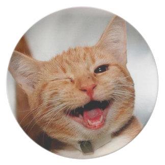 Plato Gato que guiña - gato anaranjado - los gatos