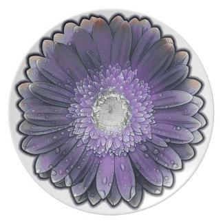 Plato Gerbera púrpura de la lluvia