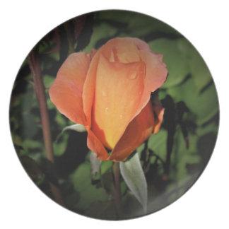 Plato Gotas del agua en color de rosa anaranjado