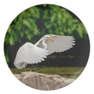 Plato Gran Egret