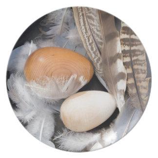 Plato Huevos y plumas
