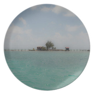Plato Isla desierta