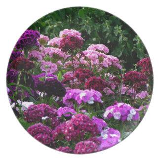 Plato Jardín de flores en verano