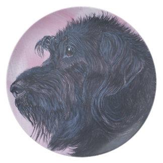Plato Labradoodle negro