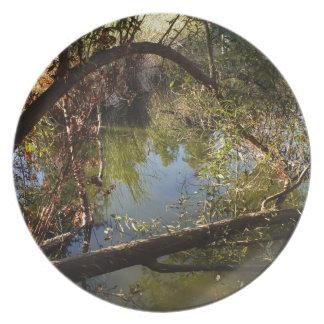 Plato Lago 4 park del barranco de Franklin