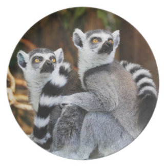 Plato Lemurs