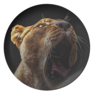 Plato león