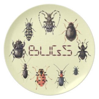 Plato Los insectos platean para las fans del insecto