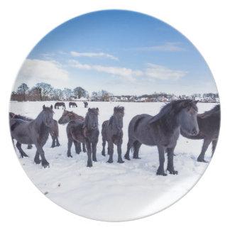 Plato Manada de los caballos negros del frisian en nieve