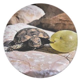 Plato Mi placa de cena de la tortuga de la uva