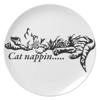 Plato Nappin del gato ..........