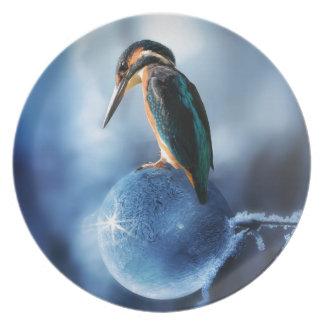 Plato Pájaro del tarareo en tiro congelado de la macro